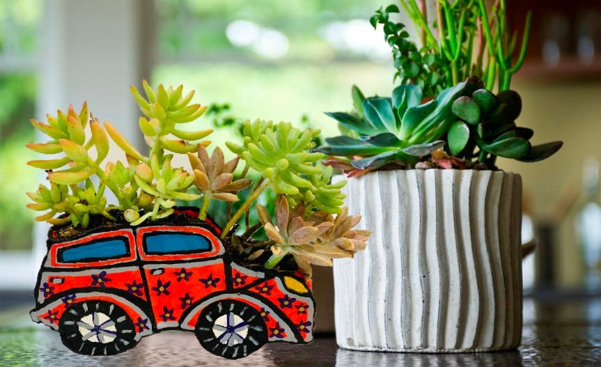 Car planter with dry air clay/Maceta de coche con pasta moldeable