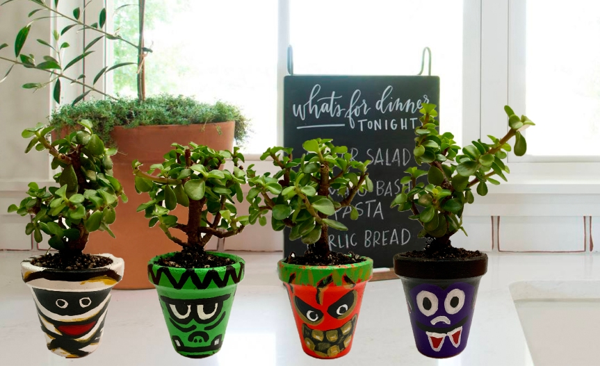 Make DIY Halloween planters / Haz macetas de Halloween DIY