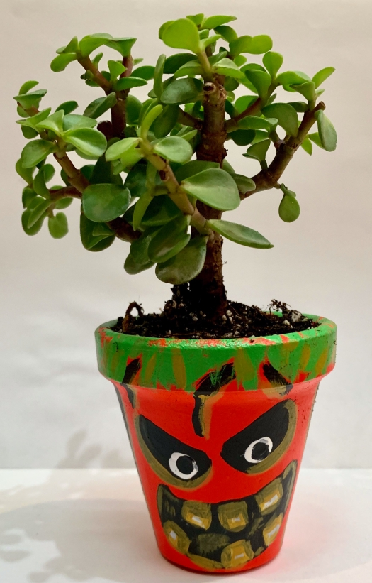 pumpkin diy planter / maceta calabaza diy